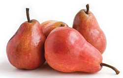 Красноплодные груши