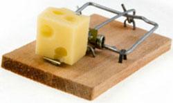 Электромагнитная мышеловка на транзисторах