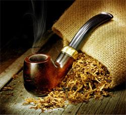 Табак на огороде