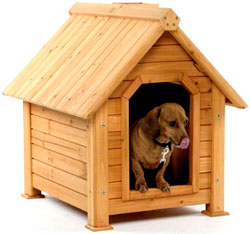 Строим собачью будку