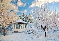 Календарь садовода: январь - февраль
