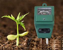 О степени кислотности почвы