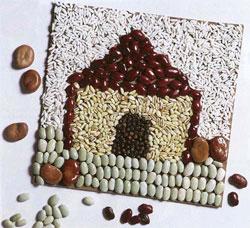 Семена и краски