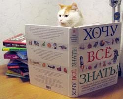 Книга вместо водки
