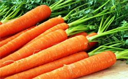 О пользе моркови
