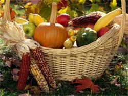 Осень в саду: работы после листопада