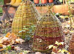 Календарь садовода: сентябрь