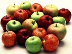 Когда снимать яблоки?