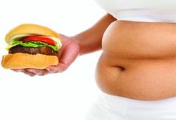 Еще раз о питании, его теориях и рекомендациях
