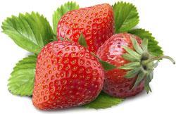 Защита ягодных культур от болезней и вредителей: календарь работ на год
