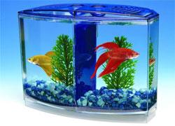 Чтобы аквариум не протекал