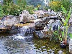 Пруд и водопад в саду