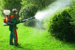 В сад с пылесосом