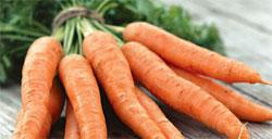 Как сохранить урожай моркови зимой