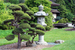 Японский сад, как образ живой природы: Декоративные элементы сада