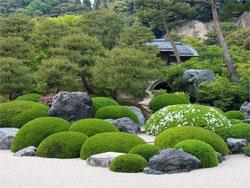 Растения в японском саду: Рекомендуемые растения, Уход за садом