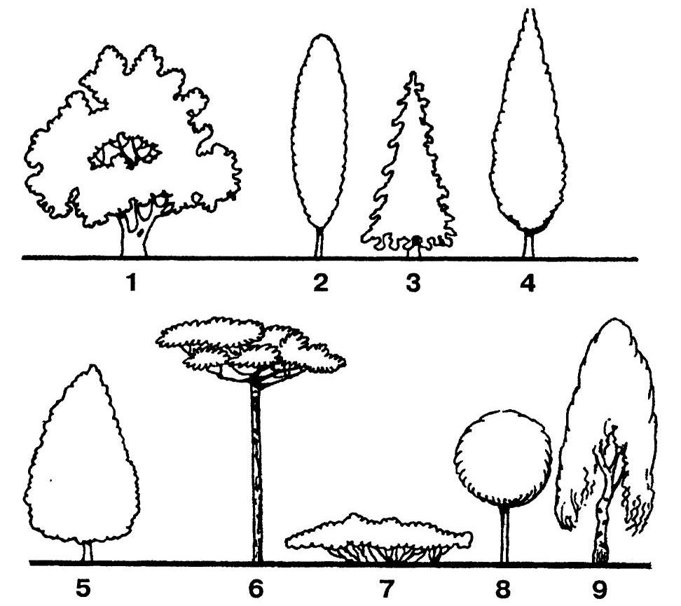 сад +и огород +своими руками, дача сад огород, сад +и огород видео, сад +и если плодовым деревьям предоставить