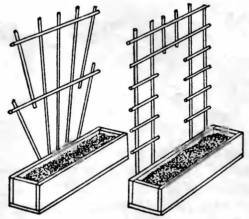 Опорная решетка для роз чертеж пожалуста