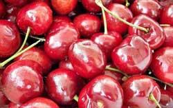 Усовершенствование вишнечистки