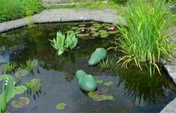 Простой декоративный водоем для садового участка