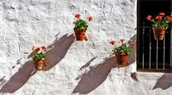 Крепление вазы к стене