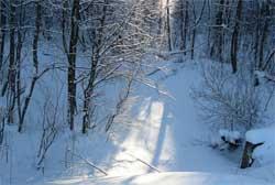 Ночлег зимой