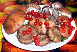 Предварительная обработка грибов