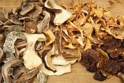 Как сушить грибы, грибной порошок