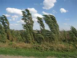 Ветромер