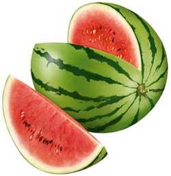 Особенности выращивания арбуза и дыни