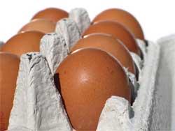 Как выбирать куриные яйца
