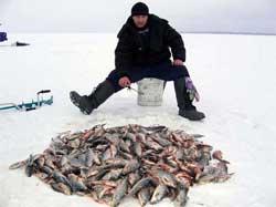 Как зимой наловить много рыбы