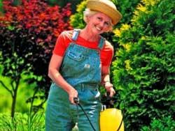 Защищаем сад без химии