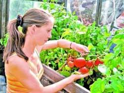 Сырой огород – жди недород