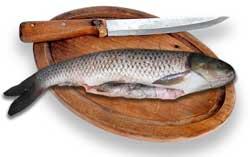 Как удержать скользкую рыбу во время чистки