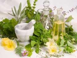 Чем полезны травяные соки