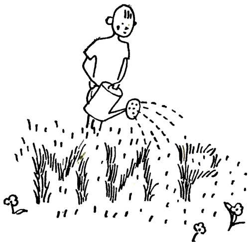 Надпись на траве