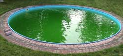 Мини-бассейн во дворе