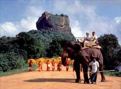 Остров манговых удовольствий – Шри-Ланка
