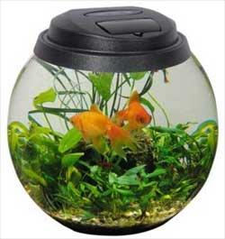 Электромагнитный насос для аквариума