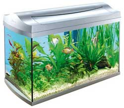 Камерный фильтр для аквариума