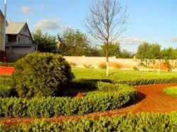 Ландшафт и озеленение большого участка