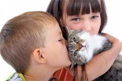 Как помочь домашним животным полюбить вашего ребенка