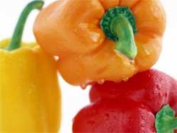 Технология выращивания сладкого перца