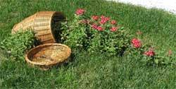 Как обустроить садовый участок для отдыха