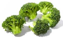 Как правильно сажать и растить брокколи