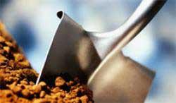 Три эффективных удобрения для почвы