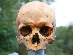 В эстонской деревне дорожный столб увенчали черепом
