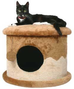 Строим кошкин дом
