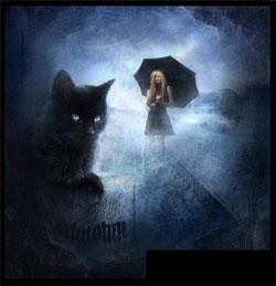 История про кошку и Человека